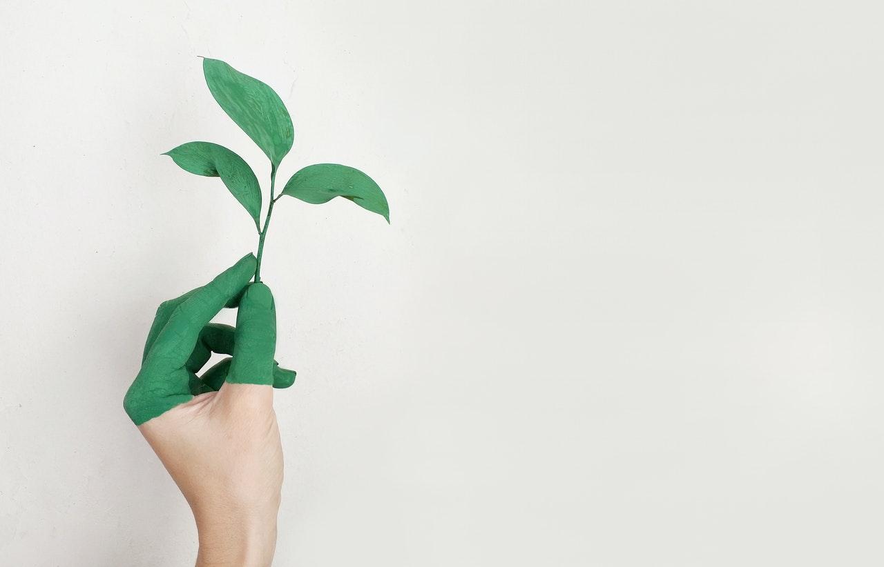 Verantwortungsvolle und umweltschonende Wege zu nachhaltigen Unternehmensprozessen